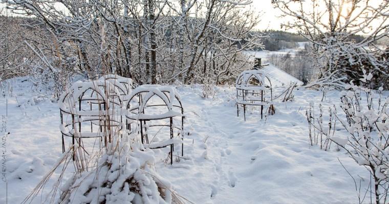 Julklappstips för en trädgårdsnörd