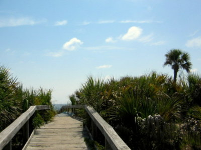 What's to Do in Hilton Head?