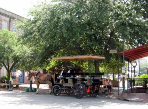 Carraige Rides by City Market, Savannah