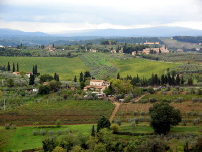 Tuscany's Top Twelve Amusing Quirks