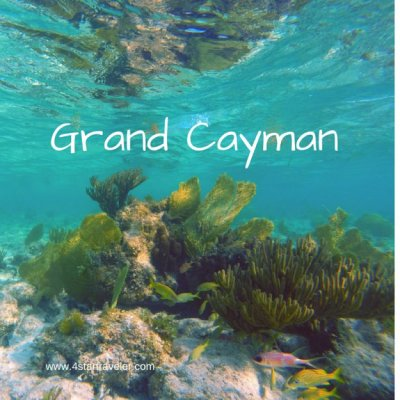 Sunny Days, White Sandy Beaches… Why Aren't You Here?  Grand Cayman