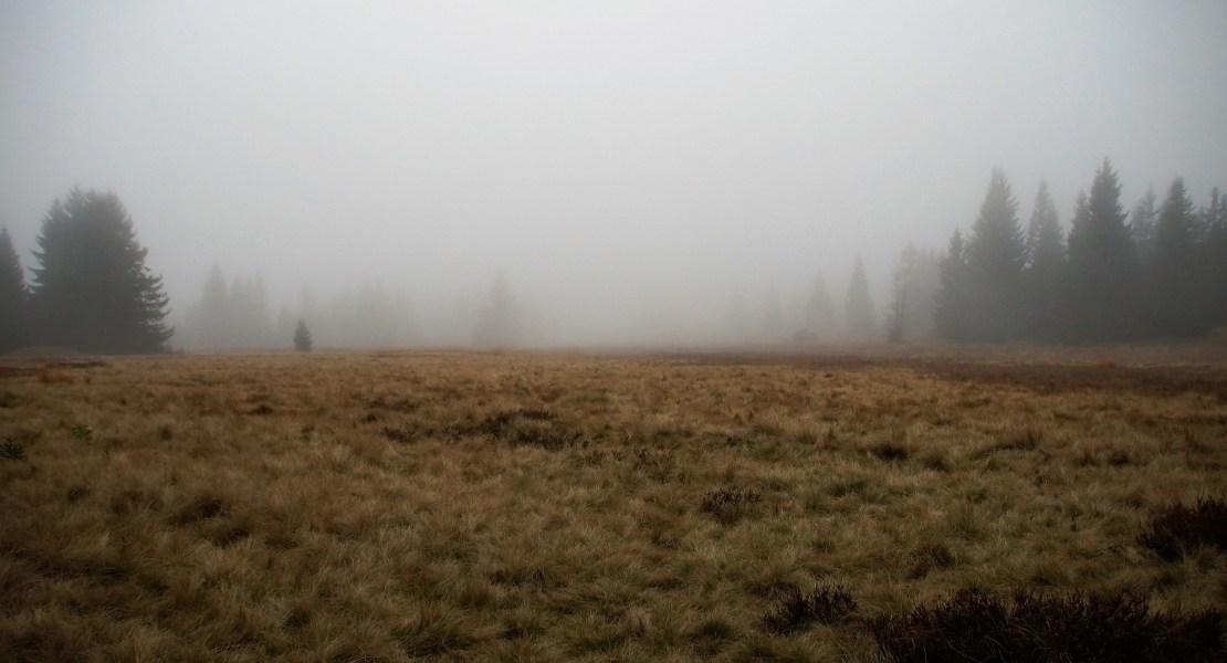 Temporada lluviosa aumentaría contagio del Covid-19