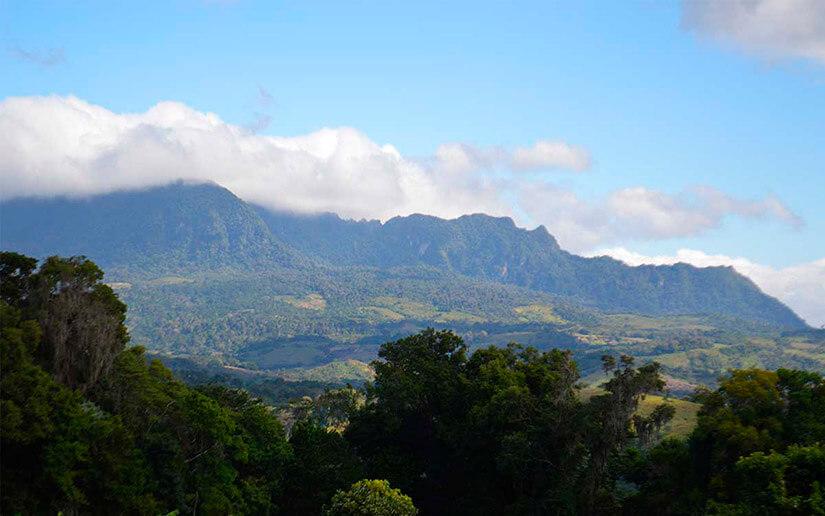 ¿Qué es el proyecto Bio-Clima que acaba de aprobar el Fondo Verde para Nicaragua?