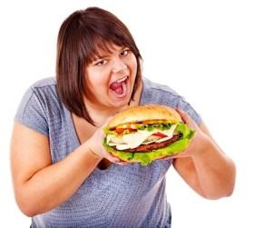 obesidad hamburguesa