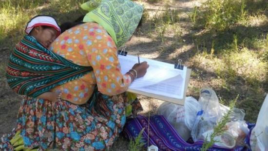 El trabajo de apoyo jurídico a la comunidad indígena nativa de Chihuahua en el centro de la represión estatal contra la consultora civil (Foto: Cortesía)