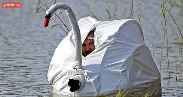 meme chapo fuga en cisne