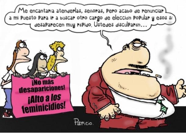 DIPUTADO CHAPULIN