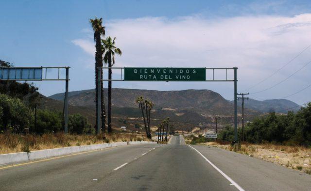 Ruta-de-Vinos-Ensenada