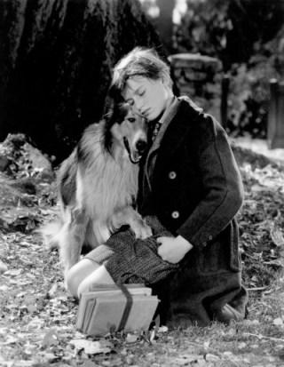 lassie-y-roddy-mcdowall-en-1943