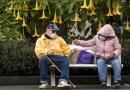 Cicese e Inger crean APP que ayuda a personas de la tercera edad a monitorear Covid-19