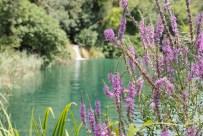 4x4overland_travel_reise_elternzeit_kroatien-7235795