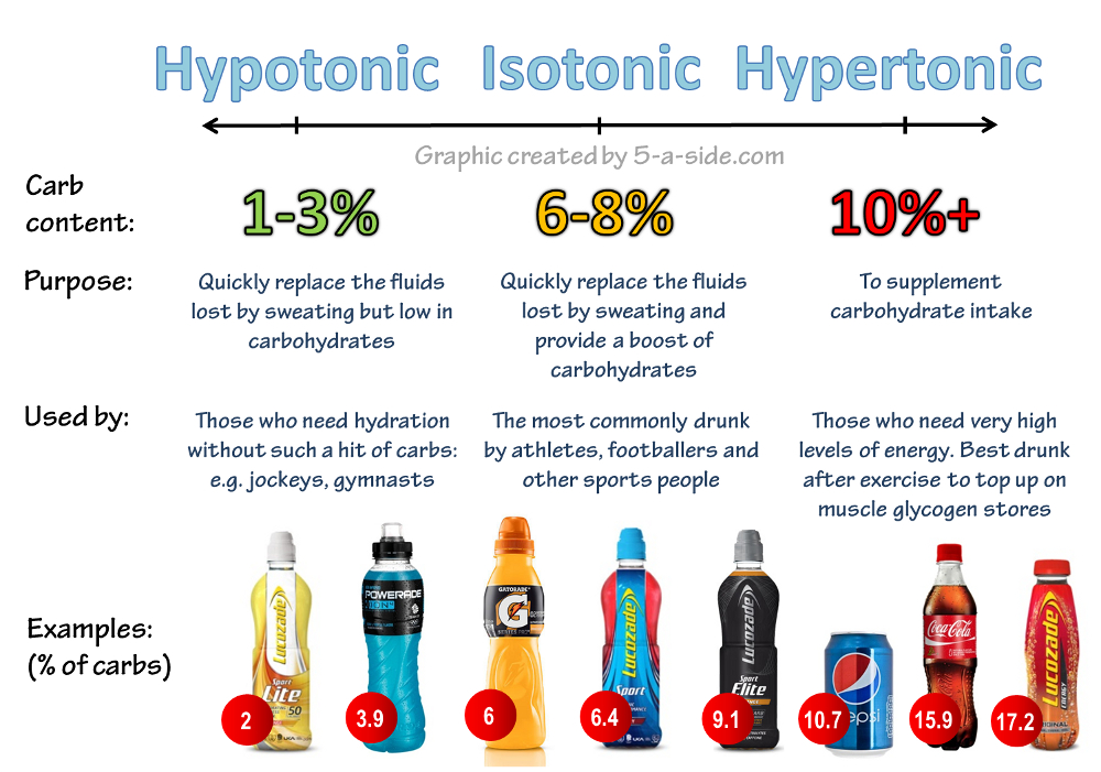 Hypotonic Isotonic Hypertonic Examples