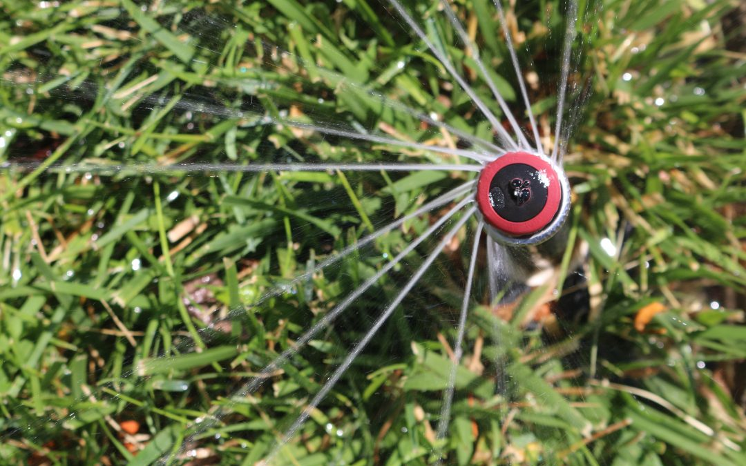 What are high efficiency rotary nozzles and why should you use them in your lawn?