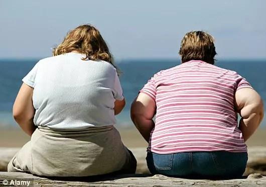 Um total de 29 milhões de brasileiros são obesos e 95 milhões estão acima do peso