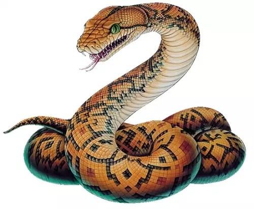 As serpentes, desde os tempos mais remotos, estiveram associadas à vida
