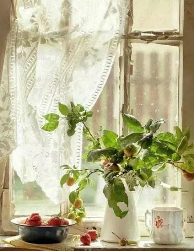 primavera ensolarada que entra pela minha janela de vidro, vaza as cortinas leves e me dá bom dia