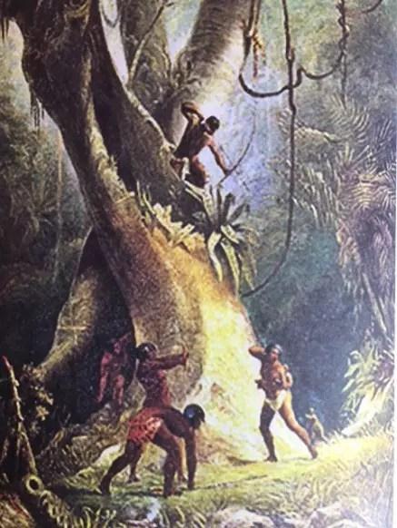Uma das ilustrações do livro
