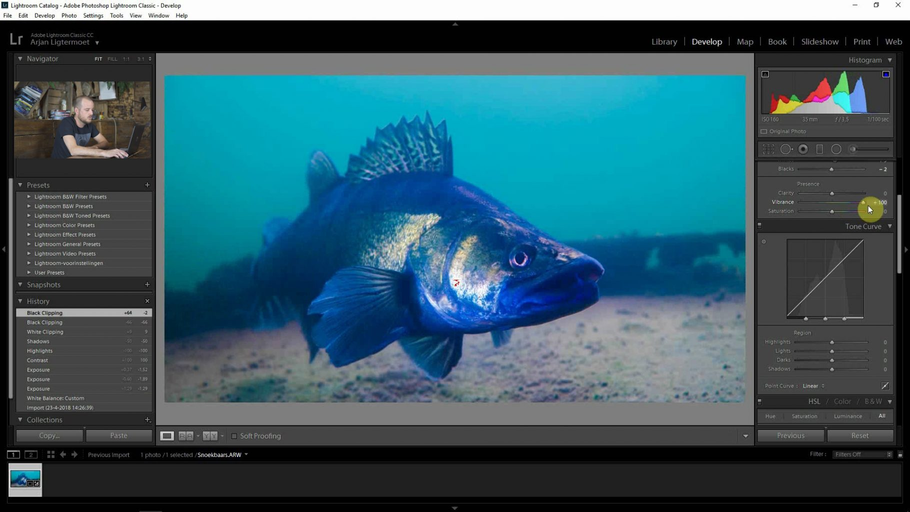 Color Correct Underwater Photo's   From Green to Mean