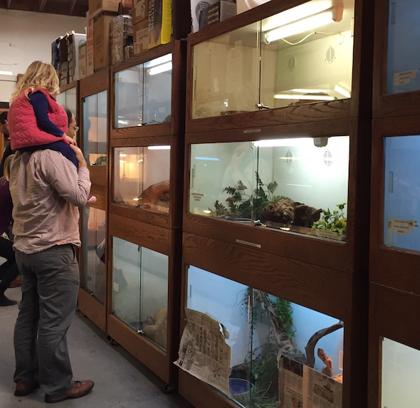 Adam and Aviva check out the Vivarium and other places to see animals up close