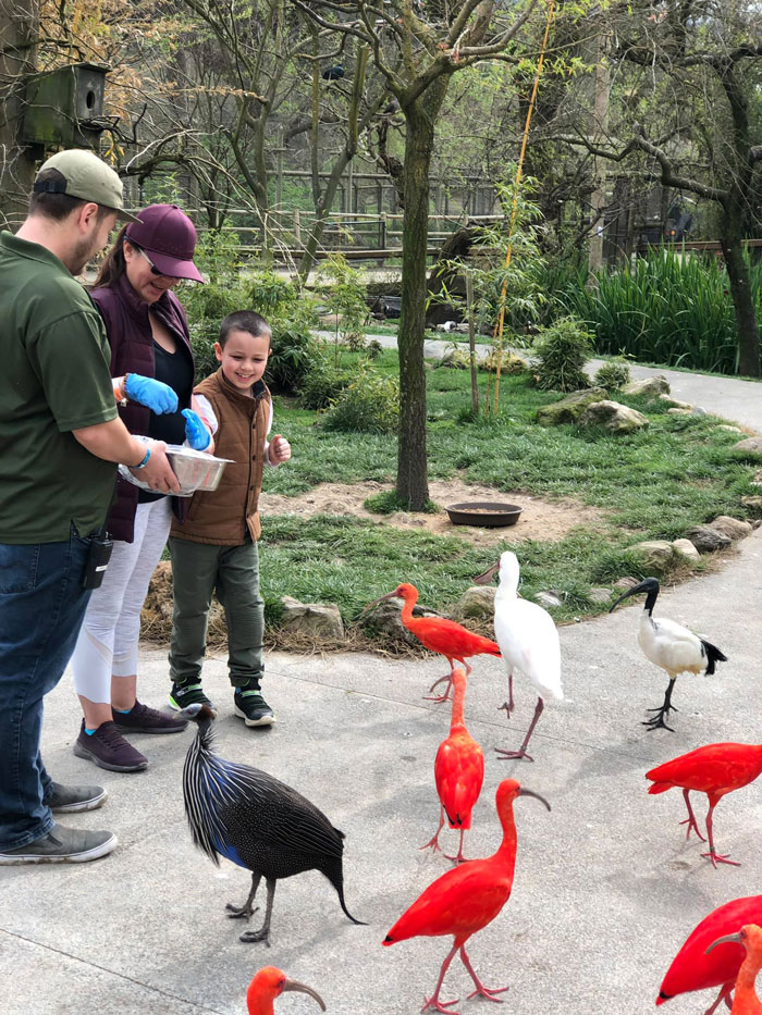 Getting one-on-one attention at Safari West