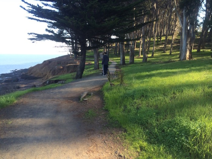 CuriOdyssey at Coyote Point: jogging path