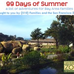 99 Days of Summer for Bay Area Kids {2015}