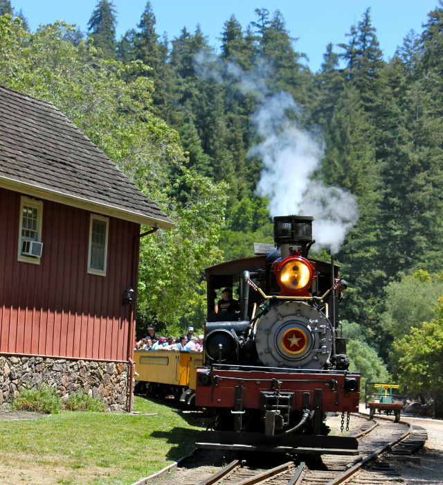 Roaring Camp Railroad in Santa Cruz is awesome for Bay Area train lovers