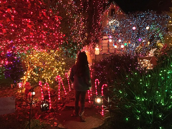 Best Christmas Lights in the Bay Area