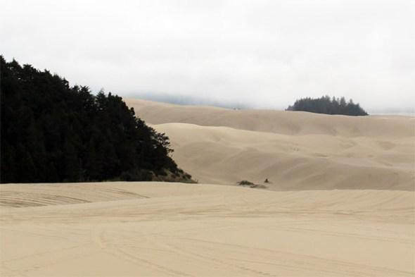 Oregon Dunes - Roadtrip to Oregon with Kids