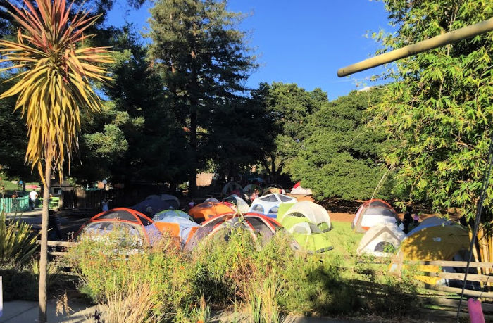 Tents on the Fairyland lawn for a sleepover
