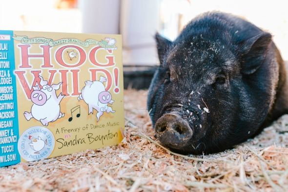 Pig tired at Hog Wild party