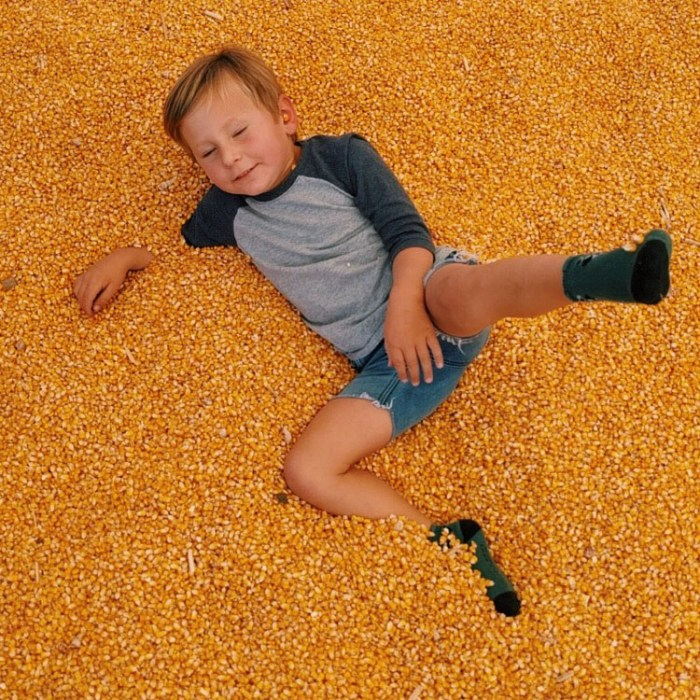 corn pit at pumpkin patch