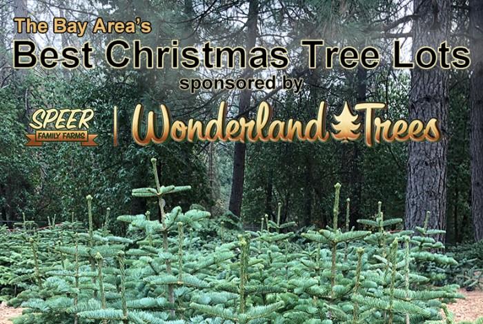wonderland tree lot eastbay