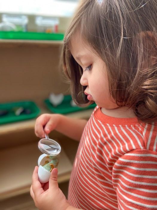 oak grove toddler montessori