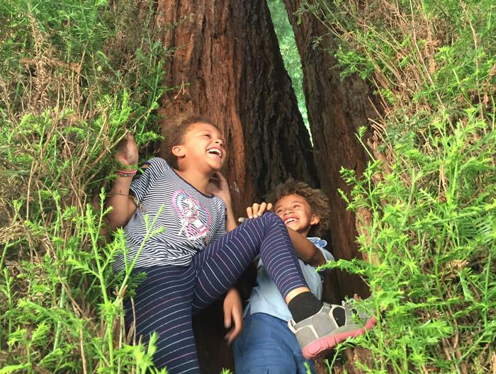 montessori in redwood regional park