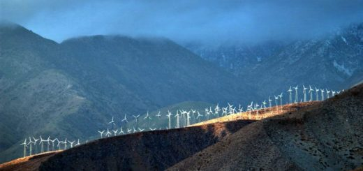 Wind park. Photo via David McNew  Getty