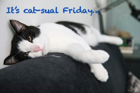 Catsual pun for casual friday!