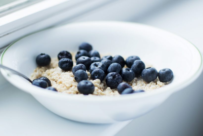 bowl of oatmeal with blueberries on windowsill 5 dog farm