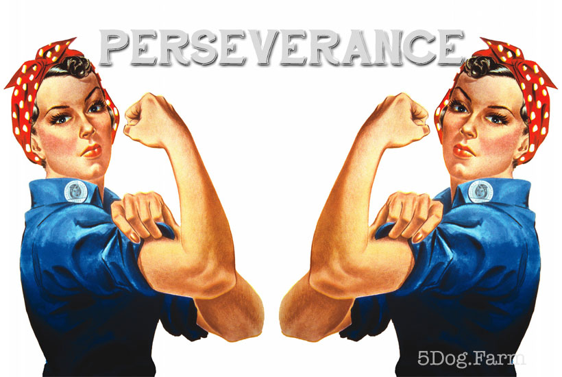 rosie the riveter with the word perserverance