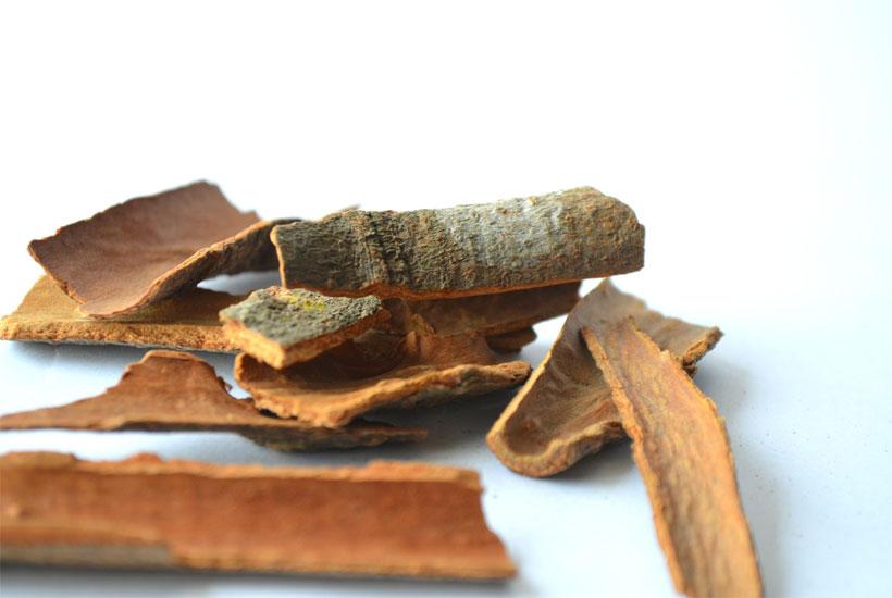 pieces of cinnamon bark