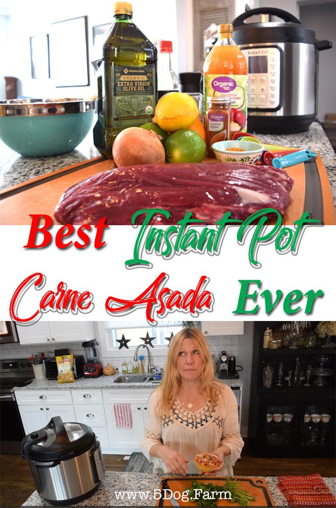 best carne asada ever 5 dog farm