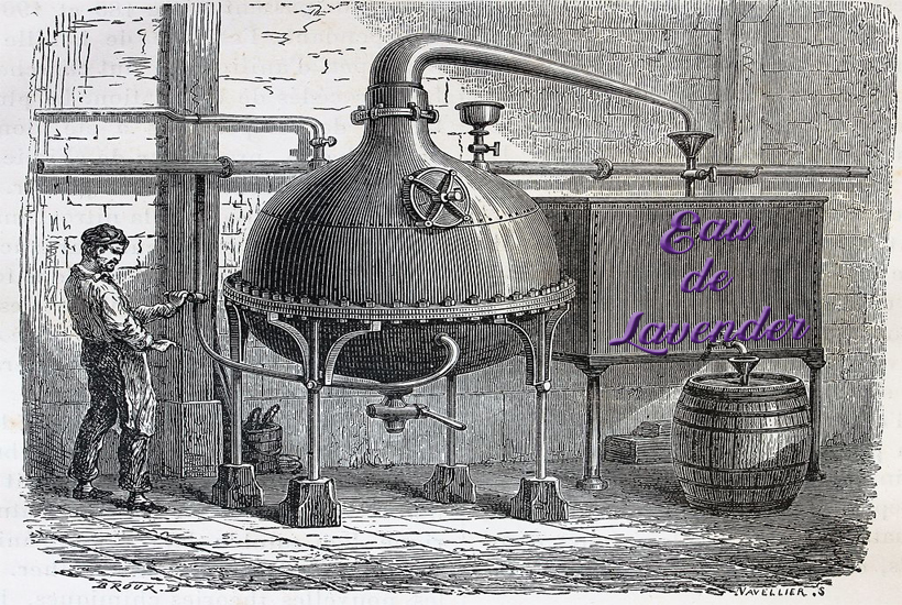 old timey distiller photo 5 dog farm