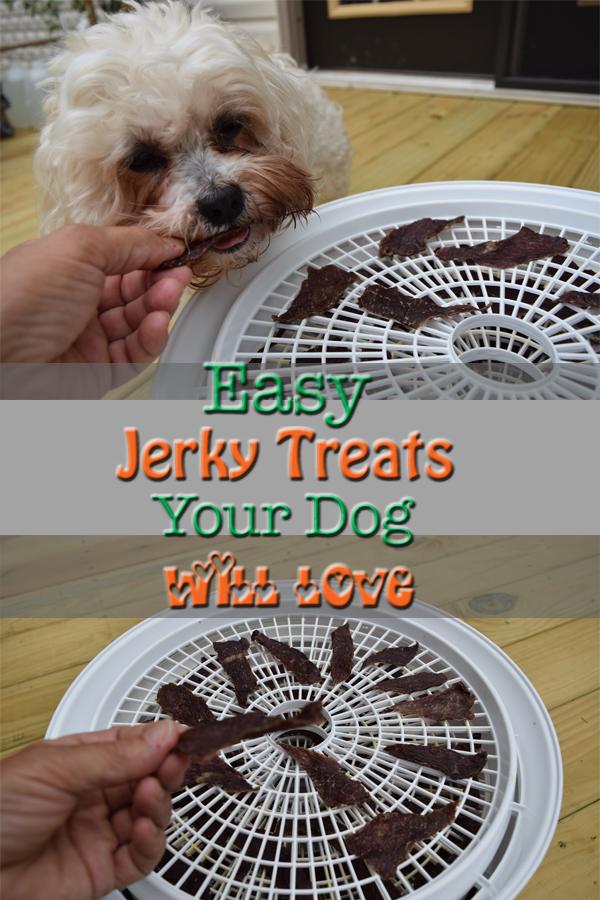 FAST Homemade Dog Treat ~ 5Dog.Farm
