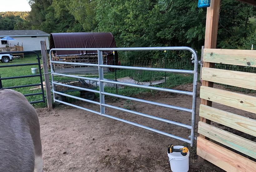 metal gate installed 5 Dog Farm