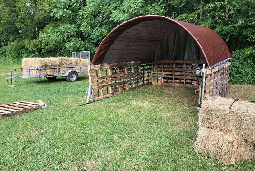 finished empty shed 5DogFarm
