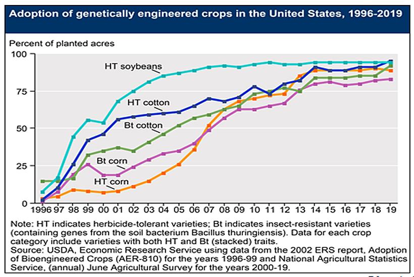2019 diagram of HT corn