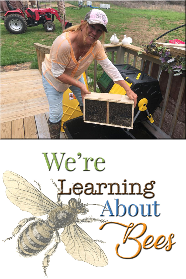 Want to learn about bees? Learn with us!