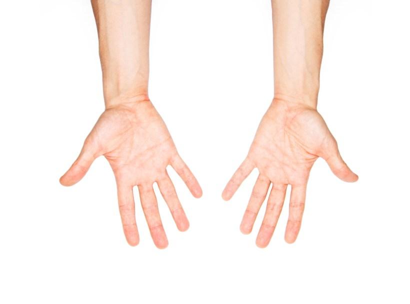 5elect5 Essentials Maqueta Hands