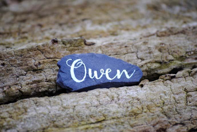 Owen-pebble-resized