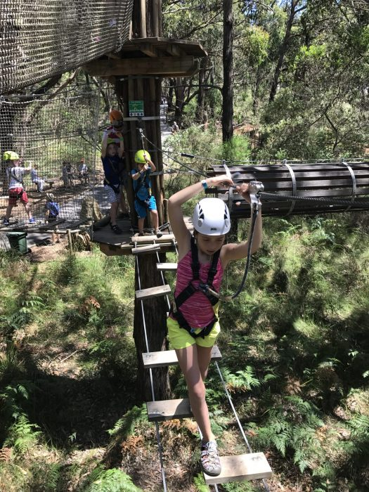 high ropes with kids